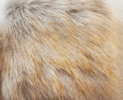 Tissavel Tundra Gold Tip Faux Fur Swatch
