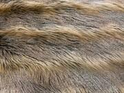Dark Desert Coyote Faux Fur Fabric Per Meter